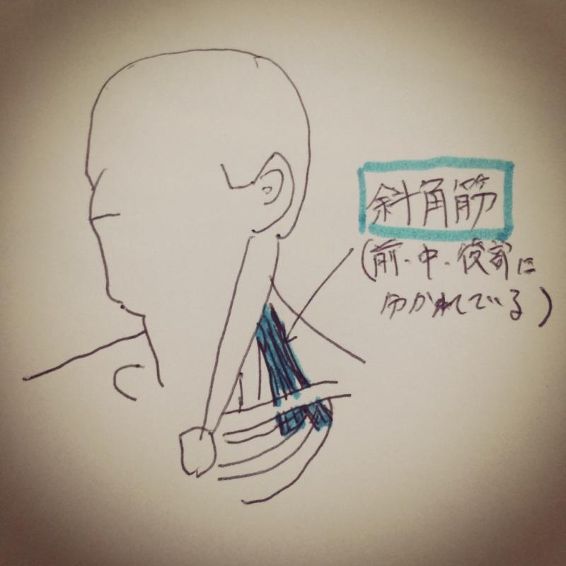 首 の 付け根 痛い